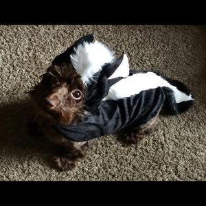 Size M Skunk Dog Halloween Costume